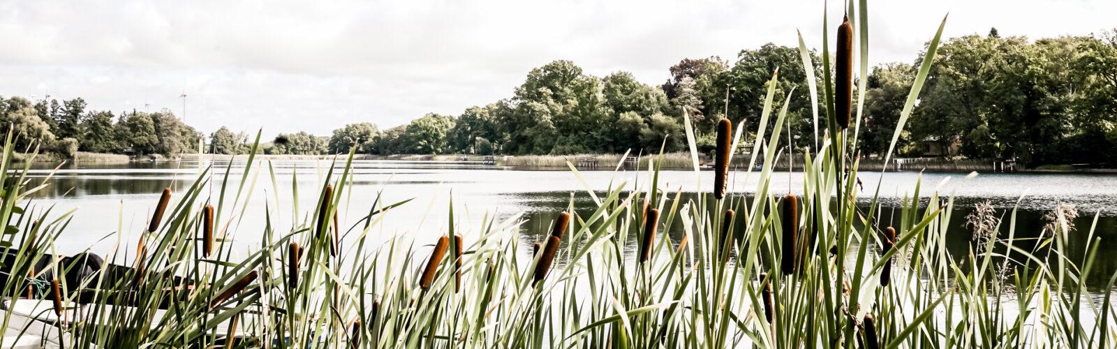 Tourismusverein Naturpark Barnim e. V.