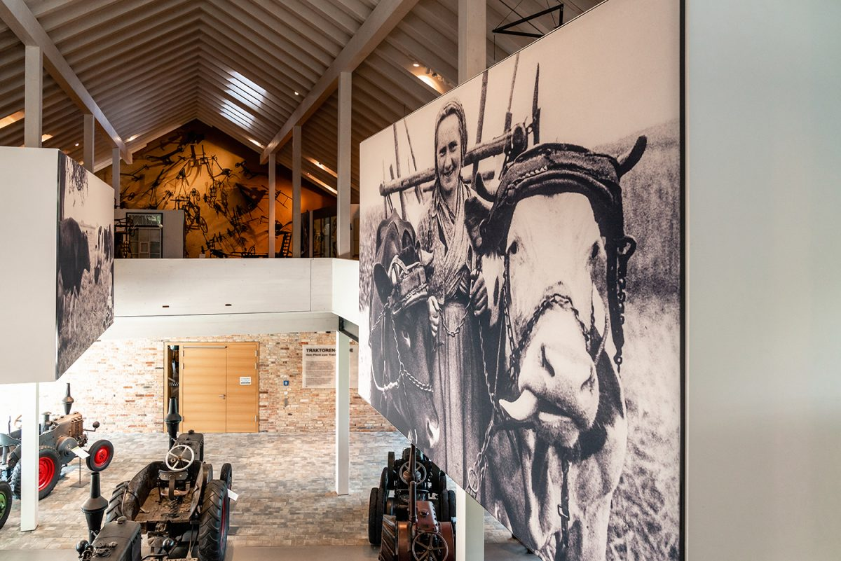 Ausstellungsraum mit Landmaschinen im Wandlitzer Barnim Panorama, im schönen Naturpark Barnim, Barnimer Land, Brandenburg.