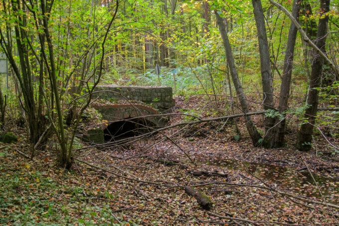 Steinerne Brücke über das Nonnenfließ im schönen Naturpark Barnim, Barnimer Land, Brandenburg.