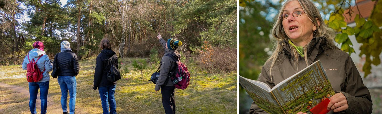 Walderlebnis Wanderungen mit Antje Neumann