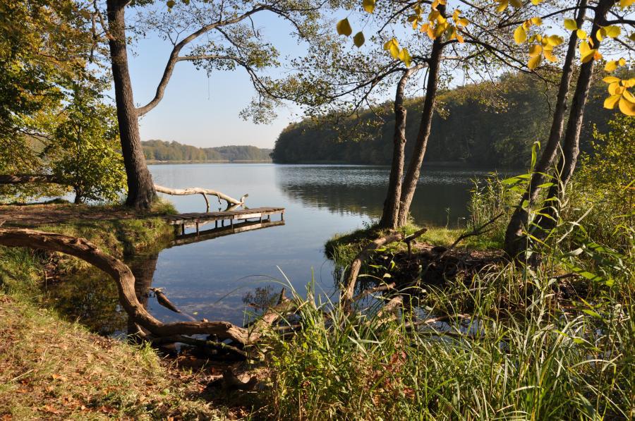 Der Liepnitzsee in Wandlitz, im schönen Naturpark Barnim, Barnimer Land, Brandenburg. Foto: © Gemeinde Wandlitz, Fotograf: L. Galler