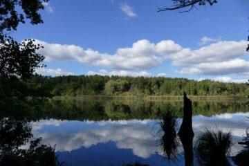 Baden im Naturpark Barnim