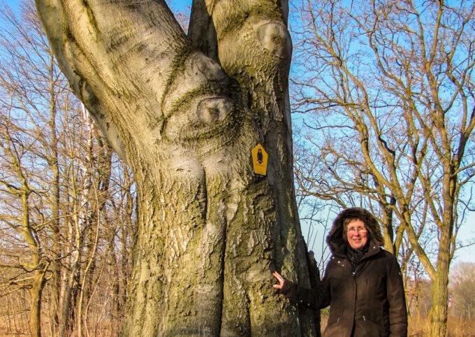 Autorin Cornelia Bera leitet historische Spaziergänge durch die Siedlung Gorinsee in Wandlitz, Ortsteil Schönwalde, im schönen Naturpark Barnim, Barnimer Land, Brandenburg.