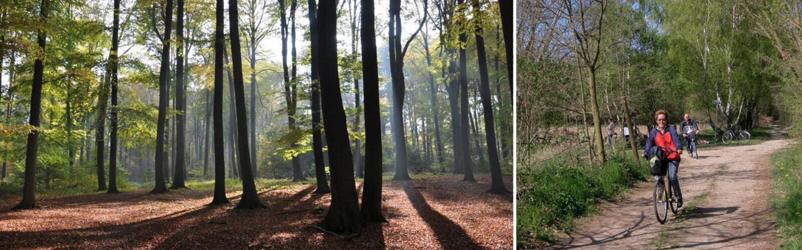 In den Sattel, fertig, los: 3 Fahrradtouren durch den herbstlichen Naturpark Barnim