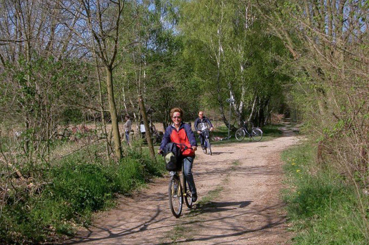 Radfahrer im schönen Naturpark Barnim, Barnimer Land, Brandenburg. Mach mal grün im Naturpark Barnim.