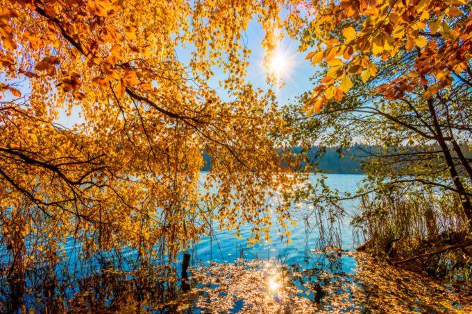 TOP 5 WANDERTOUREN-VORSCHLÄGE für deinen Herbst im