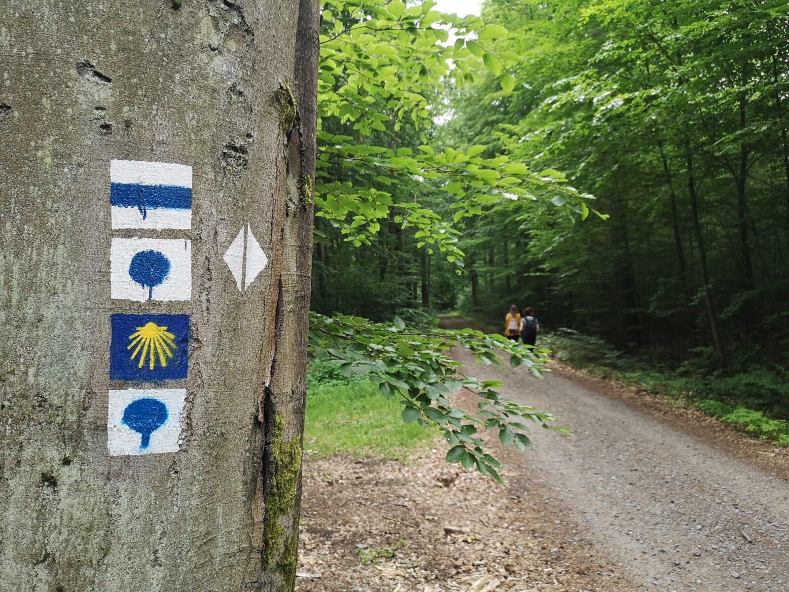 Jakobsweg durch Biesenthal – entlang der Via Imperii